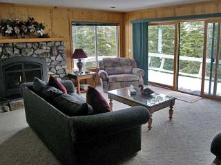 Incline Village Nevada Vacation Rentals - Cabin