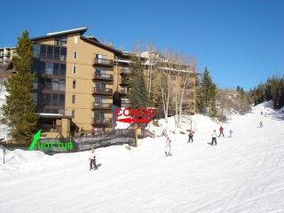 Steamboat Springs Colorado Vacation Rentals - Apartment