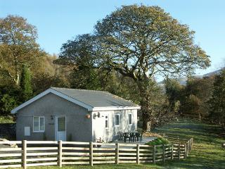 Bontnewydd Wales Vacation Rentals - Home