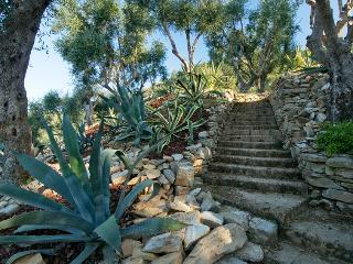 Pietrasanta Italy Vacation Rentals - Villa
