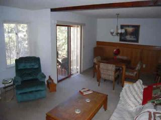 Estes Park Colorado Vacation Rentals - Apartment
