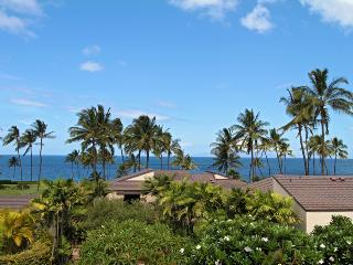 Wailea Hawaii Vacation Rentals - Apartment