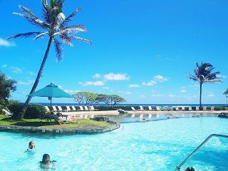 Lihue Hawaii Vacation Rentals - Apartment