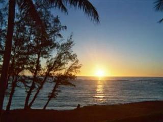 Kapaa Hawaii Vacation Rentals - Apartment