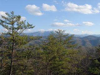 Cosby Tennessee Vacation Rentals - Home