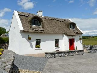 Roscommon Ireland Vacation Rentals - Home