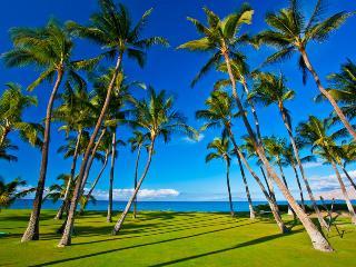 Kihei Hawaii Vacation Rentals - Home