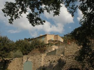 Saumane-de-Vaucluse France Vacation Rentals - Villa