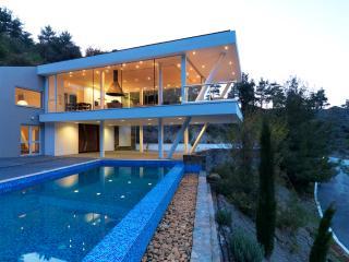 Nicosia Cyprus Vacation Rentals - Villa