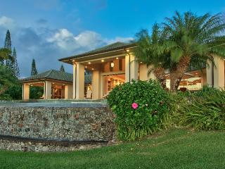Kapalua Hawaii Vacation Rentals - Villa