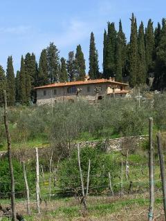 Pergine Valdarno Italy Vacation Rentals - Apartment