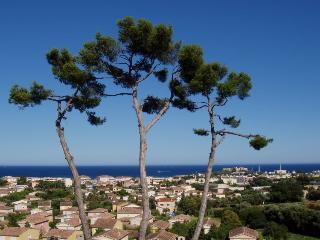 Juan-les-Pins France Vacation Rentals - Apartment