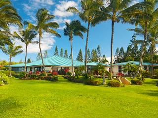 Kilauea Hawaii Vacation Rentals - Villa