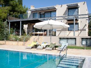 Lagonisi Greece Vacation Rentals - Villa