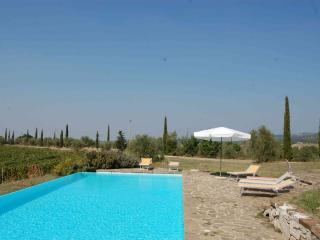 Castellina In Chianti Italy Vacation Rentals - Apartment