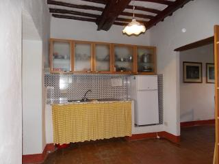 Castellina In Chianti Italy Vacation Rentals - Apartment