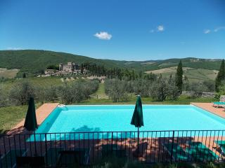 Gaiole in chianti Italy Vacation Rentals - Apartment
