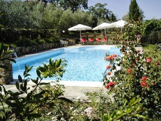 Pergine Valdarno Italy Vacation Rentals - Home