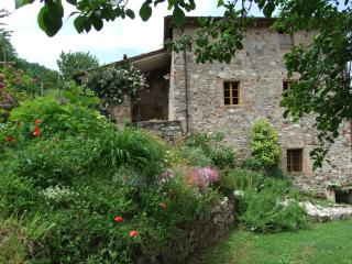 San Martino in Freddana Italy Vacation Rentals - Home
