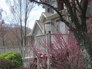 Asheville North Carolina Vacation Rentals - Apartment