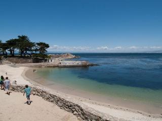 Pacific Grove California Vacation Rentals - Apartment