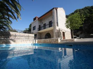Villa with pool in Dubrovnik