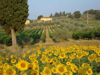 Bucine Italy Vacation Rentals - Home