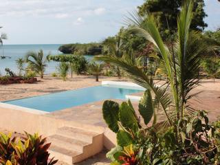 Villa Tatu pool