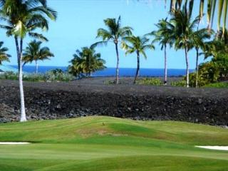 Kohala Coast Hawaii Vacation Rentals - Apartment