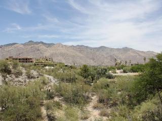 Tucson Arizona Vacation Rentals - Apartment