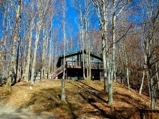 Wooded Cottage, in the Heart of Beech Mountain.  The Perfect getaway in summer or winter