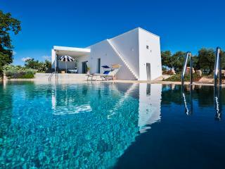 Cisternino Italy Vacation Rentals - Villa