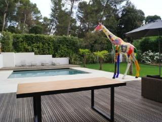 Bouc-Bel-Air France Vacation Rentals - Home