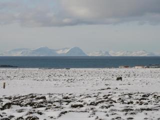 Skagastrond Iceland Vacation Rentals - Home