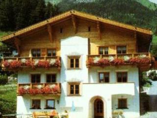 Pettneu am Arlberg Austria Vacation Rentals - Apartment