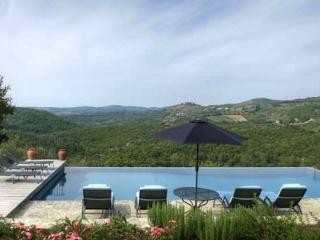 Gaiole in chianti Italy Vacation Rentals - Home