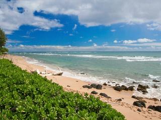 Kapaa Hawaii Vacation Rentals - Apartment