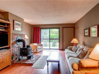 Pittsfield Vermont Vacation Rentals - Apartment