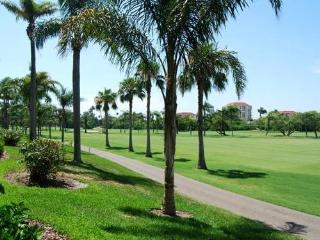 Saint Petersburg Florida Vacation Rentals - Apartment