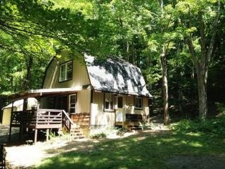 Hessel Michigan Vacation Rentals - Home