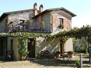Castelmuzio Italy Vacation Rentals - Villa