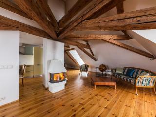 Tallinn apartment with firepace