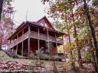 Blue Ridge Georgia Vacation Rentals - Home