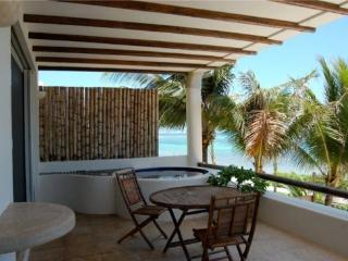 Bunga Bunga - Private terrace with Jacuzzi - Puerto Morelos vacation rentals