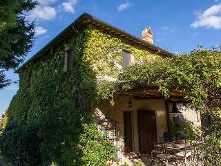 Montefollonico Italy Vacation Rentals - Home