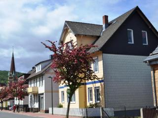 Vacation Apartment in Bad Harzburg - 614 sqft, far sighted, close to town, silent (# 5465) #5465