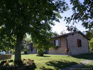 Monticiano Italy Vacation Rentals - Home