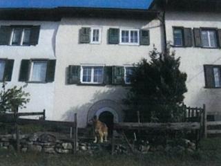 Maienfeld Switzerland Vacation Rentals - Apartment