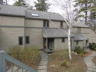 Gilford New Hampshire Vacation Rentals - Apartment