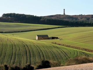 Winterbourne Abbas England Vacation Rentals - Home